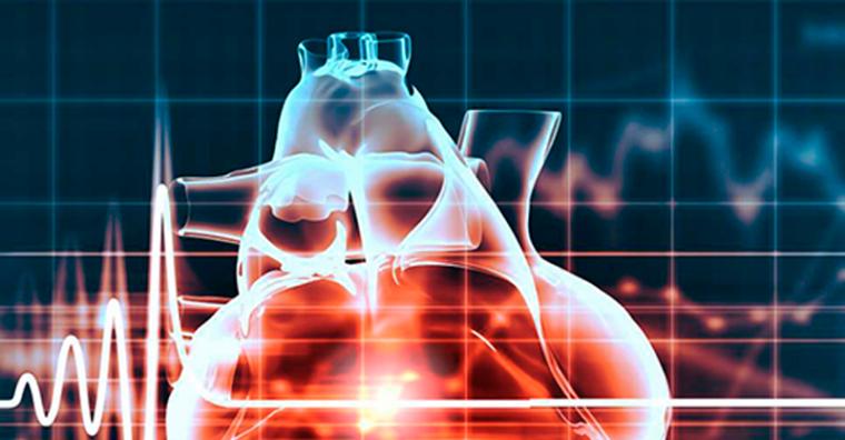 Illustration de l'article Risques cardiovasculaires Mericq et la clinique Esquirol s'engagent