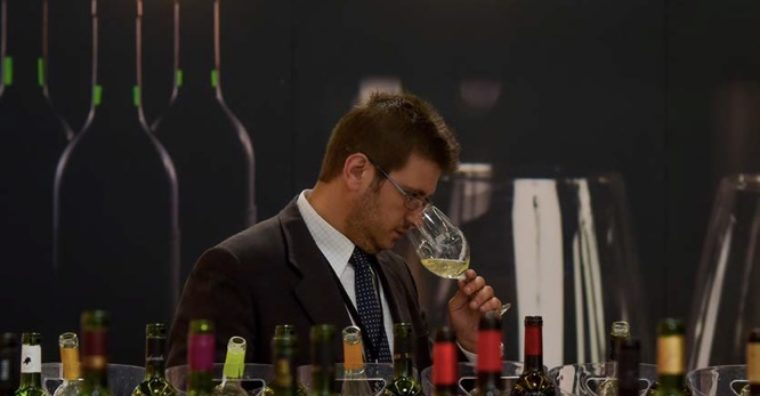 Illustration de l'article Vinexpo Bordeaux : le bio monte en puissance