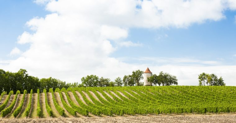 Illustration de l'article [ Dordogne ] Tourisme local, c'est tout vert !